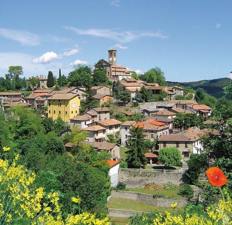 Borgo di Fortunago