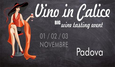 Vino in Calice Wine Tasting Event