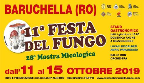 11° Festa del Fungo